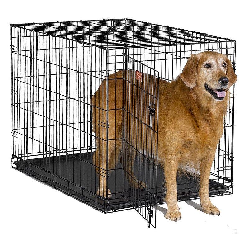 Клетка для собаки изображение